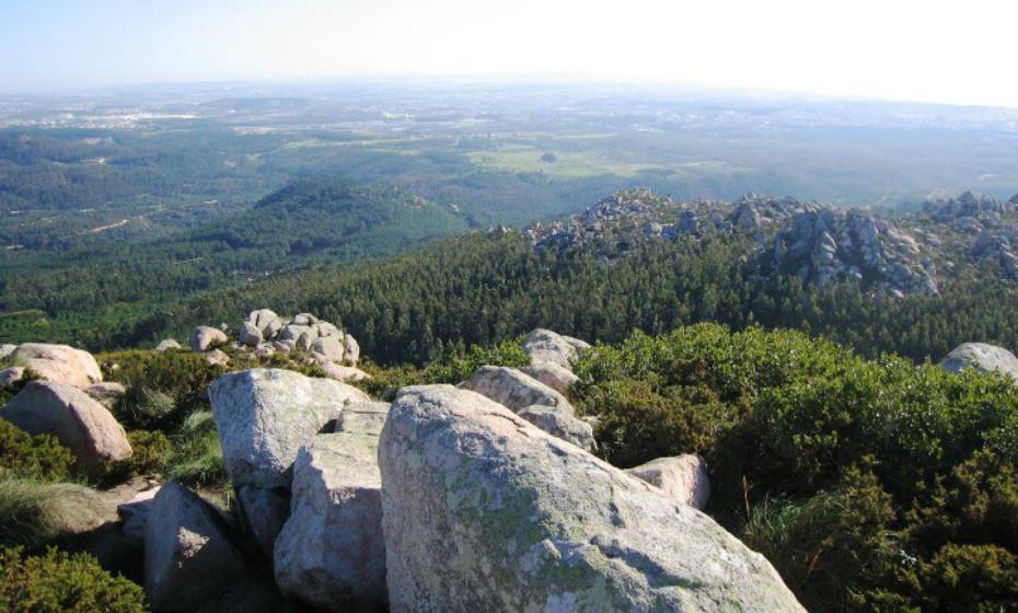 Parque Natural de Sintra-Cascais: Situado entre a zona de Sintra até ao Cabo da Roca, divide-se em duas zonas distintas - a zona agrícola com vista a produzir fruta e vinho, e a zona costeira, com praias, falésias e dunas.