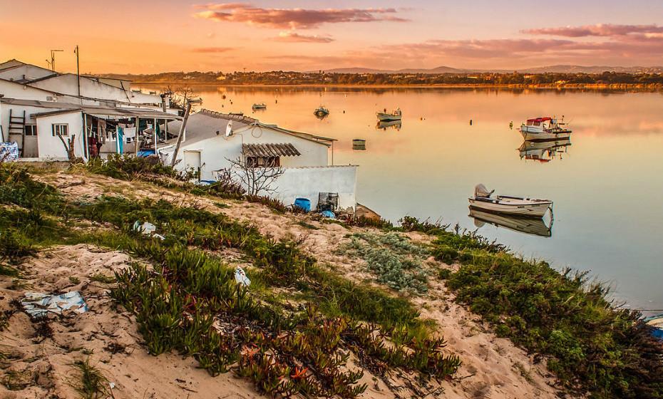 Parque Natural da Ria Formosa: Este sapal situa-se na província do Algarve e abrange uma área de 18.400 hectares ao longo de 60 km desde a praia do Ancão até à praia da Manta Rota. Foi considerado um dos parques mais belos do Algarve, devido ao seu habitat e paisagem.