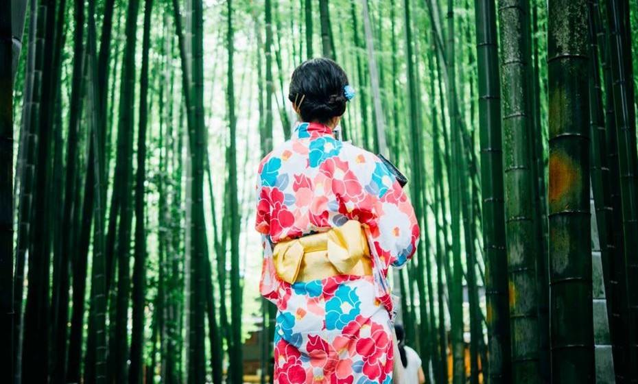 """No Japão, os benefícios para a saúde das florestas levaram alguns governos locais a promover a """"terapia florestal"""". A pesquisa mostra que o tempo passado na floresta pode impulsionar o sistema imunológico, inclusive contra o cancro."""