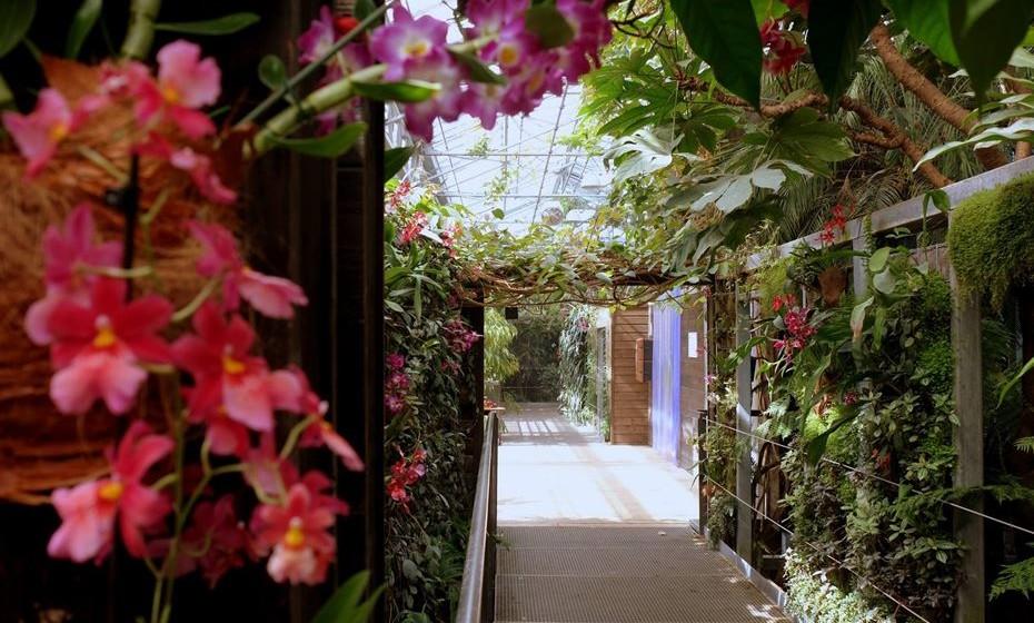 Terra Botanica, Angers, França