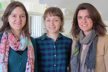 As investigadoras Marta Monteiro Ana Catarina Alves e Susana Loureiro