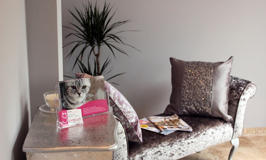 Longcroft Luxury Cat Hotel East Barnet