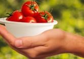 Comer tomates reduz risco de cancro de pele para metade