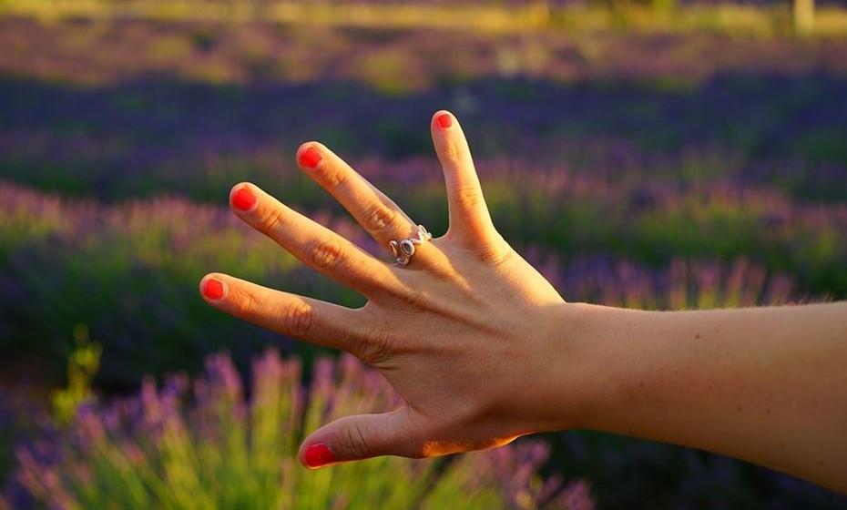 Usar um anel no dedo anelar da mão do yin indica que usa a sua criatividade para resolver problemas e desafios. Se o usa no dedo anelar da mão do yang, tem a capacidade de ensinar como ser criativo e consegue trazer à superfície as melhores qualidade dos outros.