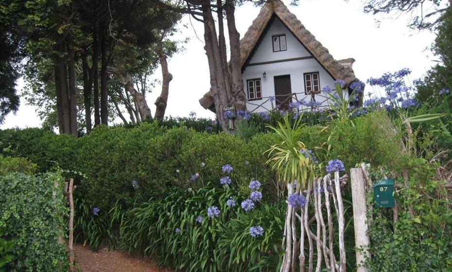 A Casa do Pico, na Madeira, é uma típica casa de campo com telhado de colmo cercada de 3 mil metros de terreno cultivado e árvores de fruto. Fica em Santana a 5 minutos da floresta Laurissilva e de levadas e veredas. O centro (farmácia, correios, polícia, centro de saúde, lojas, cafés, bares e restaurantes) fica a 10 minutos a pé.