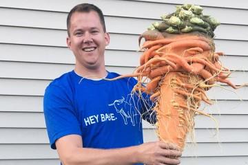E a cenoura mais pesada do mundo tem…