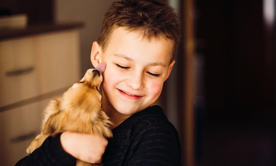 Depois de acariciar ou abraçar o seu cão, lave as suas mãos com água e sabão.