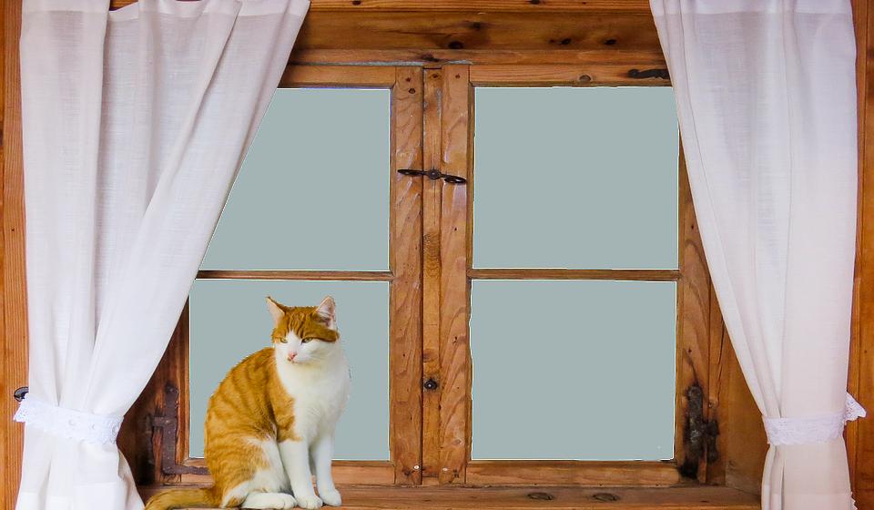 Comecemos pelo básico. Faça uma vistoria à casa e verifique se tem fugas de ar nas frestas das portas e janelas. Isole-as para evitar a saída de calor ou a entrada de frio.