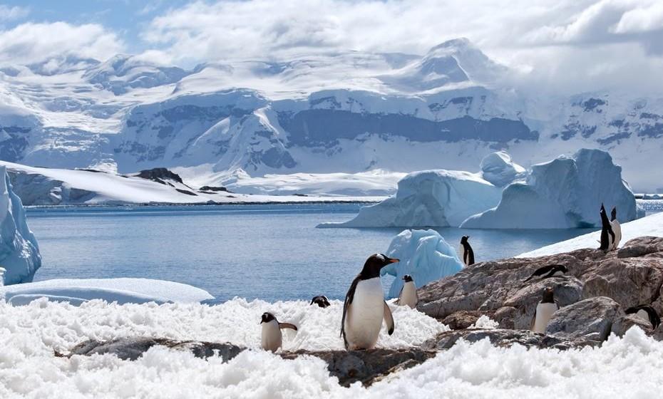 Acampar na Antártida. A Antártica é verdadeiramente a fronteira final quando se trata de viagens de aventura, proporcionando paisagens intocadas, vida selvagem única e muitas atividades (cruzeiro, espeleologia…). Durante três dias, faça esqui e caminhadas e desfrute desta brancura da natureza.