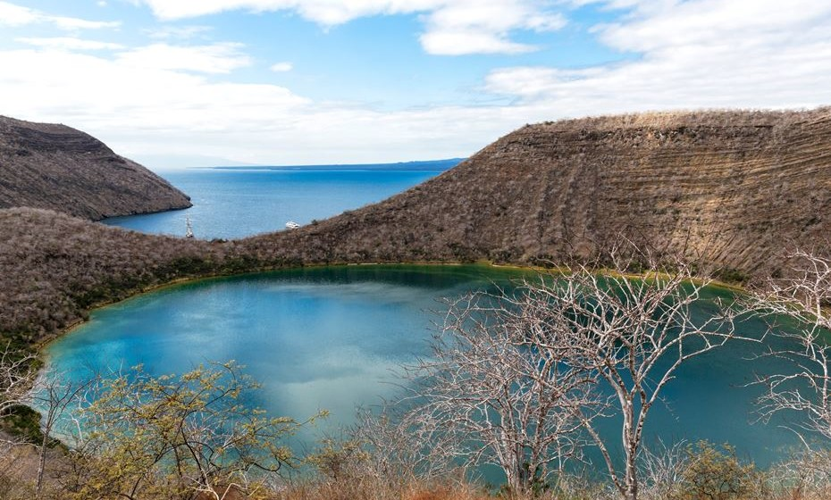 As Ilhas Galápagos, ao largo da costa do Equador, são um dos destinos mais famosos nas listas dos viajantes, graças à sua vida selvagem única e paisagens maravilhosas. A cadeia de 19 ilhas oferece muitas atividades únicas, desde caminhadas ao relaxar no lago salino Darwin com tartarugas e iguanas nas proximidades.