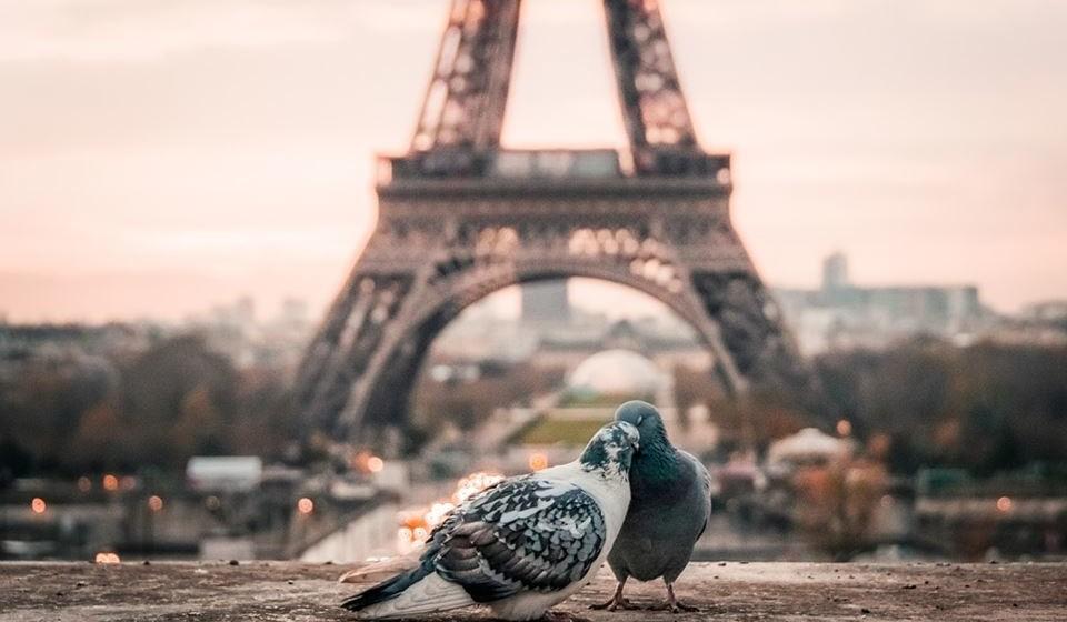 4 – Torre Eiffel, Paris, França