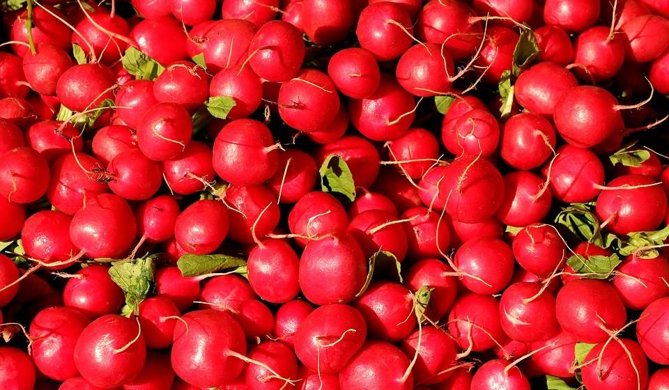 Rabanete: O rabanete é uma boa fonte de vitamina C, além de conterem pequenas quantidades de ferro, potássio e ácido fólico (folato). Apresentam poucas calorias.