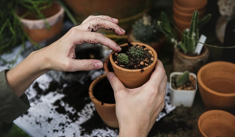 'Controle o que é controlável' – gastar demasiada energia em coisas que não estão nas suas mãos é um desperdício. Concentre-se em itens que estão sob o seu controlo e use a sua energia de forma sábia.