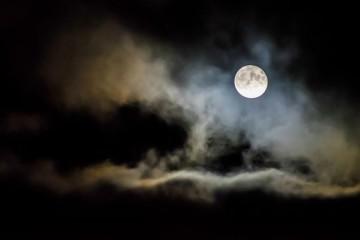 Lua, sustentáculo da vida
