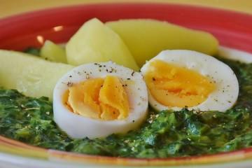 DECO testa ovos em Portugal e atesta qualidade