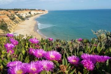 Depois de bater todos os recordes de crescimento por cinco anos consecutivos, a principal região de turismo de Portugal quer agora combater a sazonalidade e criar atrativos para o ano inteiro. Porque o Algarve é muito mais do que praias. Veja algumas imagens da natureza algarvia