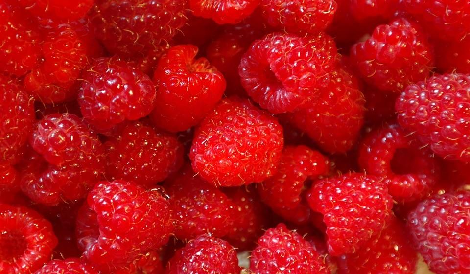 Framboesas – As framboesas são nutritivas, deliciosas e repletas de antioxidantes. Como os mirtilos, elas são ricas em antocianinas e têm efeitos anti-inflamatórios no corpo.