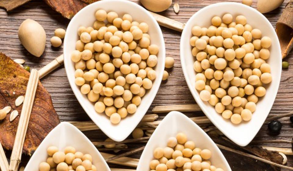 A espermina é um nutriente obtido na soja, que prolonga a fase de crescimento do cabelo.