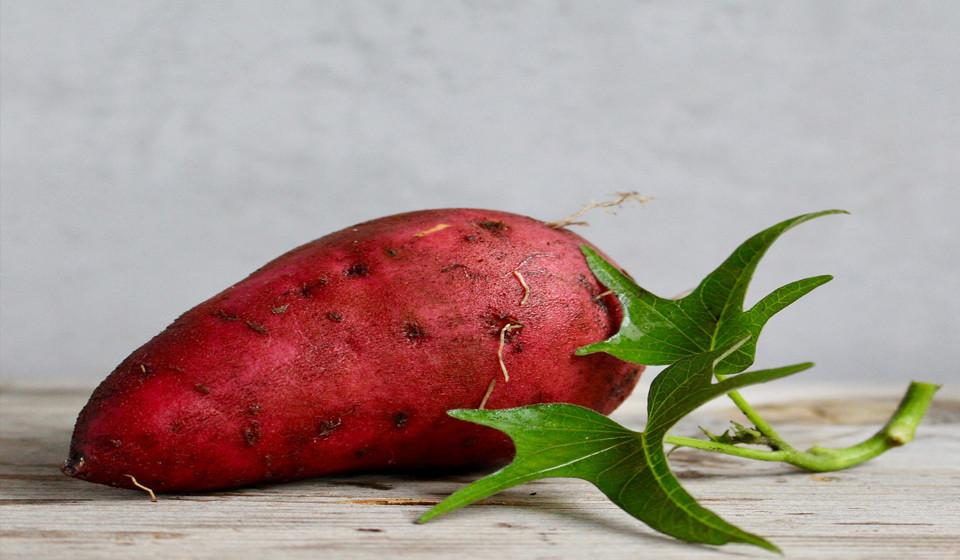 Também a batata doce é rica em vitamina A.