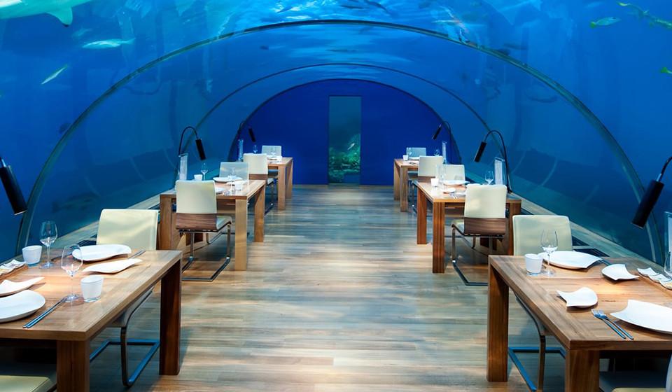 Restaurante submerso numa vista panorâmica de 180 graus. Delicie-se num cenário improvável e repleto da magia da natureza.