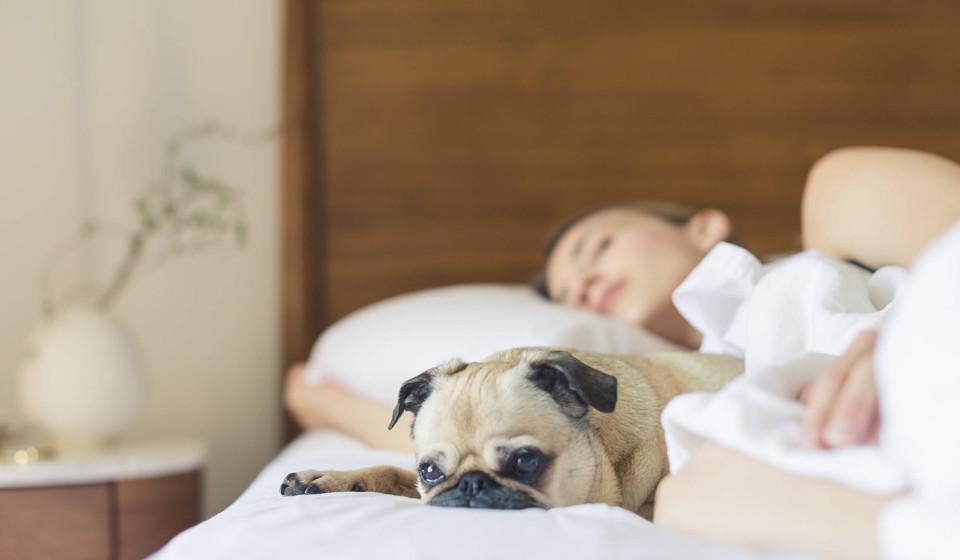 Durma bem. Tal como o stress, não dormir as horas necessárias podem aumentar os níveis de cortisol no sangue. Tente descansar entre sete a oito horas diárias.