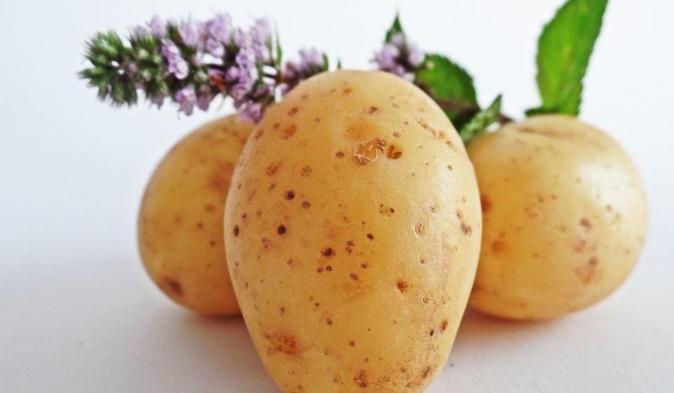 Batatas para diminuir manchas do rosto: ótimo clareador natural, a batata é considerada um dos melhores remédios ayurvédicos para uma pele com brilho natural. Basta esfregar gentilmente uma fatia de batata crua nos locais com manchas e hiperpigmentação.