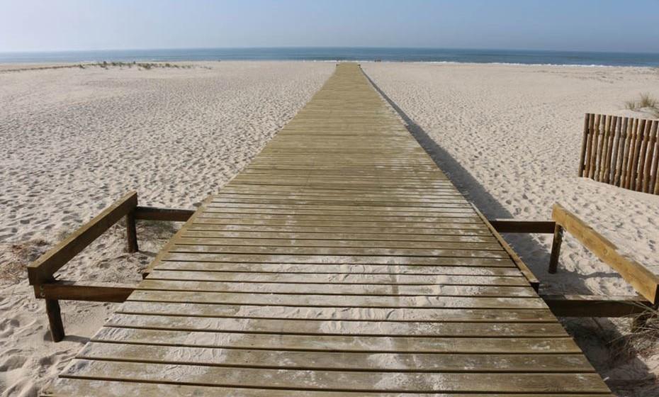 Praia de São Jacinto – Aveiro: Na zona de Aveiro, a Praia de São Jacinto, junto ao Canal da Barra e a poucos quilómetros da cidade, é uma praia ainda no seu estado quase selvagem. Integrada na Reserva Natural das Dunas de São Jacinto, é perfeita para a prática de desportos aquáticos, como surf, ou para longos passeios à beira mar. Com acesso facilitado à praia, é ideal também para férias em família. Foto: CMA.