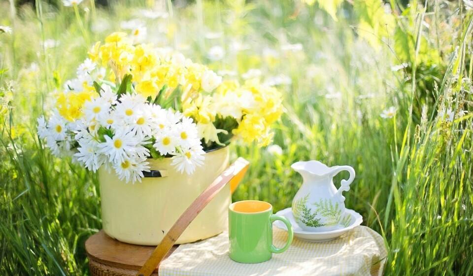 Chá verde - Este tem grandes propriedades antioxidantes e vários nutrientes, como é o caso do aminoácido L-teanina, que afeta diretamente o cérebro. A L-teanina pode aumentar certos neurotransmissores no cérebro, incluindo a dopamina.