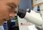 Estudo: crescimento das células cancerígenas travado através da redução do pH