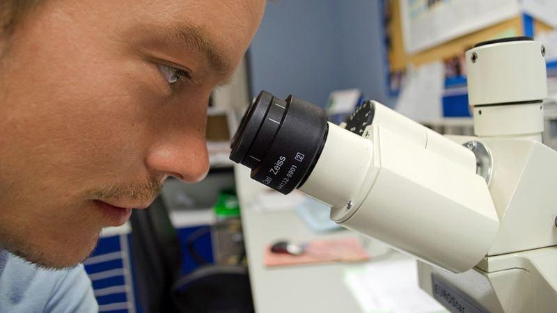 Crescimento de células cancerígenas travado através da redução do pH