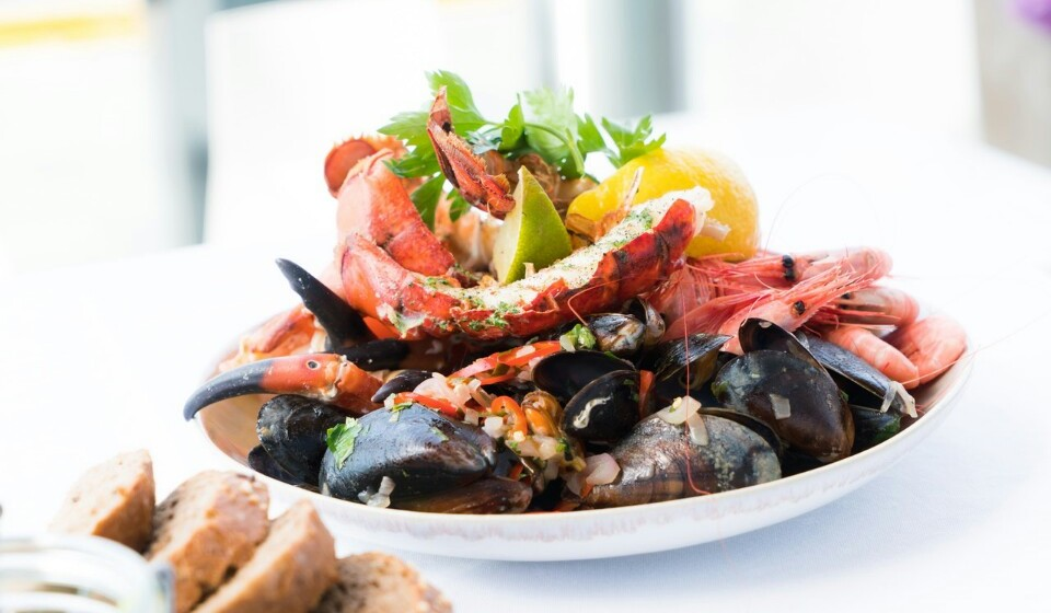 Marisco - Os mariscos são bastante nutritivos e os mais consumidos são as amêijoas, ostras, vieiras e mexilhões. Não os consuma só nos petiscos.