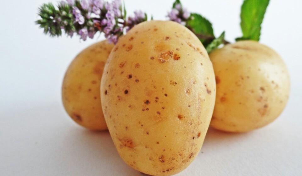 Estas são ricas em potássio, magnésio, ferro, cobre, vitaminas C e B e manganês. Numa única batata vai encontrar todos os nutrientes de que necessita.
