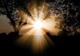 12 Inspirações para um despertar ayurvédico