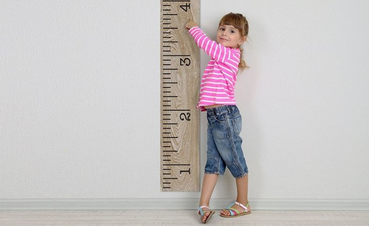 Nova ferramenta de análise de ADN permite prever altura e possíveis doenças