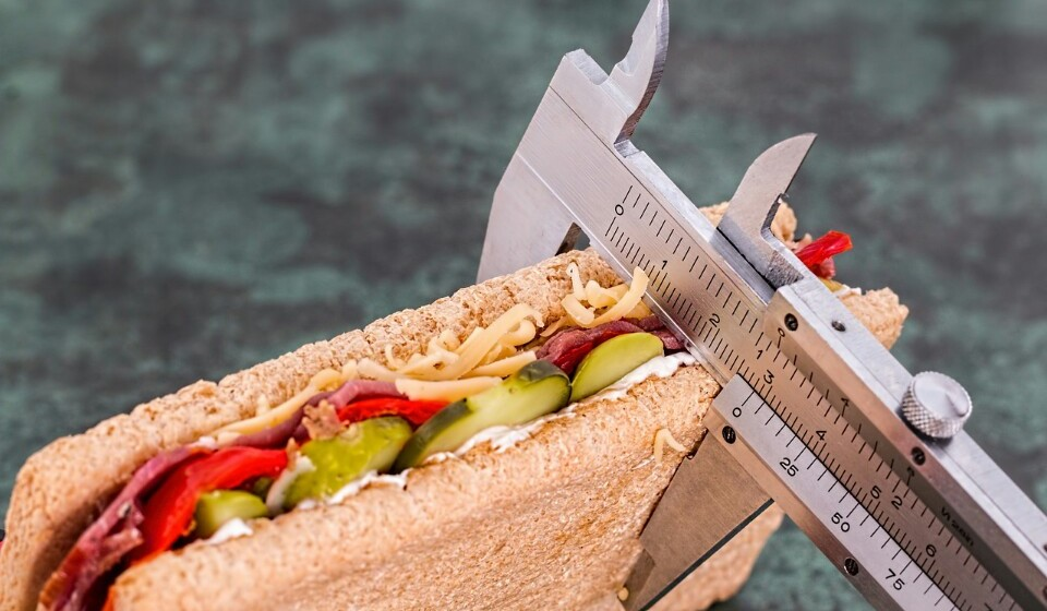Nutricionistas profissionais - Estes vão ter como objetivo preparar refeições e porções pessoais tendo em atenção as necessidades nutricionais de cada pessoa.