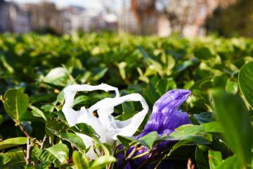 Parlamento Europeu proíbe plástico descartável até 2021: conheça a estratégia