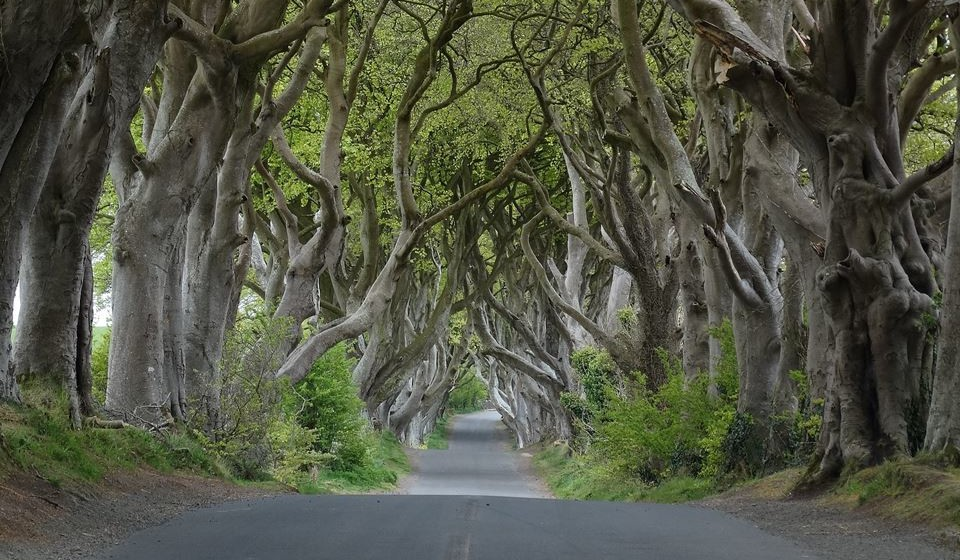 4 – Dark Edges, Irlanda (Foto_ Wikimedia)