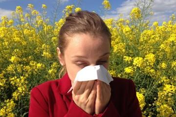 Alergias e ayurveda: para uma primavera mais calma