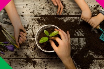 Workshops ensinam a fazer uma horta biológica em casa