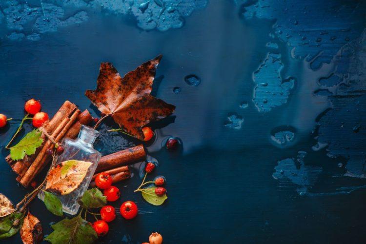 O outono chegou! Temperaturas mais amenas, o dourado das árvores, castanhas assadas a fumegar na rua, as mantas e uma chávena de chá que aquecem o coração em frente à televisão. E que tal transportar este ambiente outonal para casa?