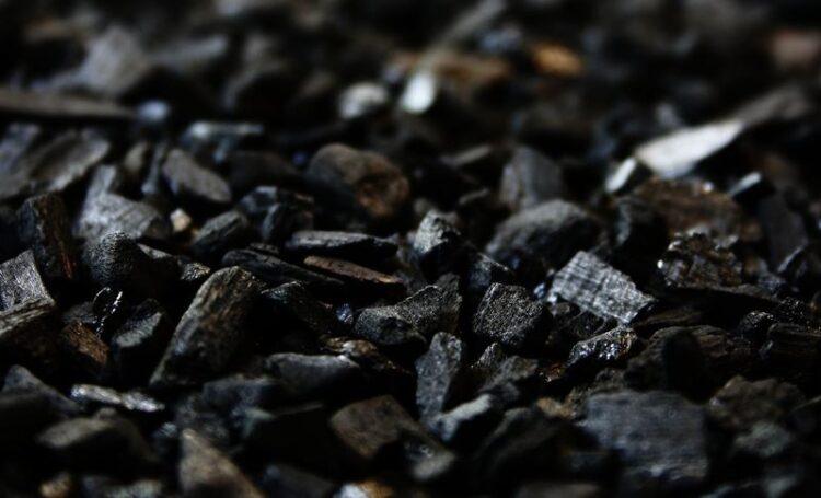 Já ouviu falar no carvão vegetal ativado?