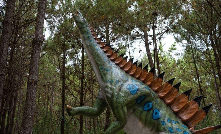 Miragaia: modelo de dinossauro único no mundo está em Portugal
