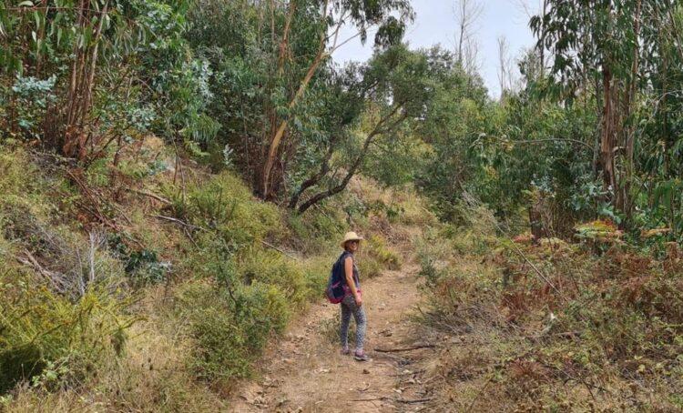 Portuguesa faz caminhada para angariar fundos para investigação em doenças raras