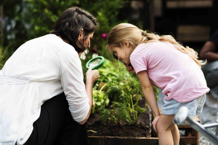 Jardim Zoológico lança Clube da Natureza com atividades para toda a família