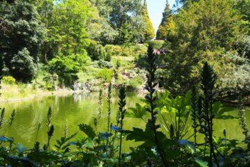 1 Parque no Porto