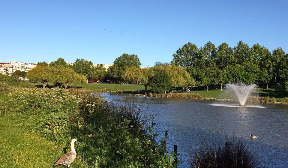 10 Parque da Paz, Almada