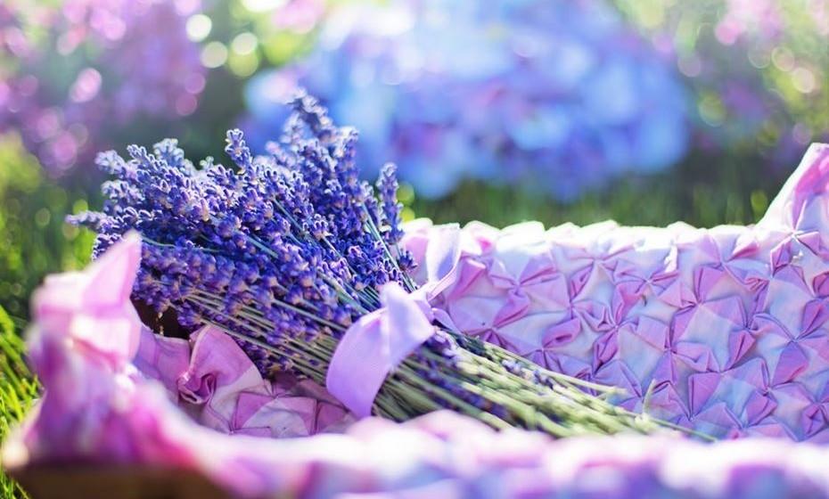 É uma cor ótima para um local de meditação, recolhimento ou leitura. Mas atenção, pode ser uma cor depressiva e melancólica, se usada em excesso.