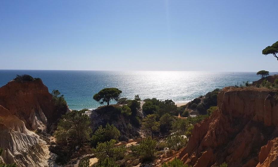 Veja imagens do que pode usufruir no Pine Cliffs Resort, localizado na Praia da Falésia, Algarve.
