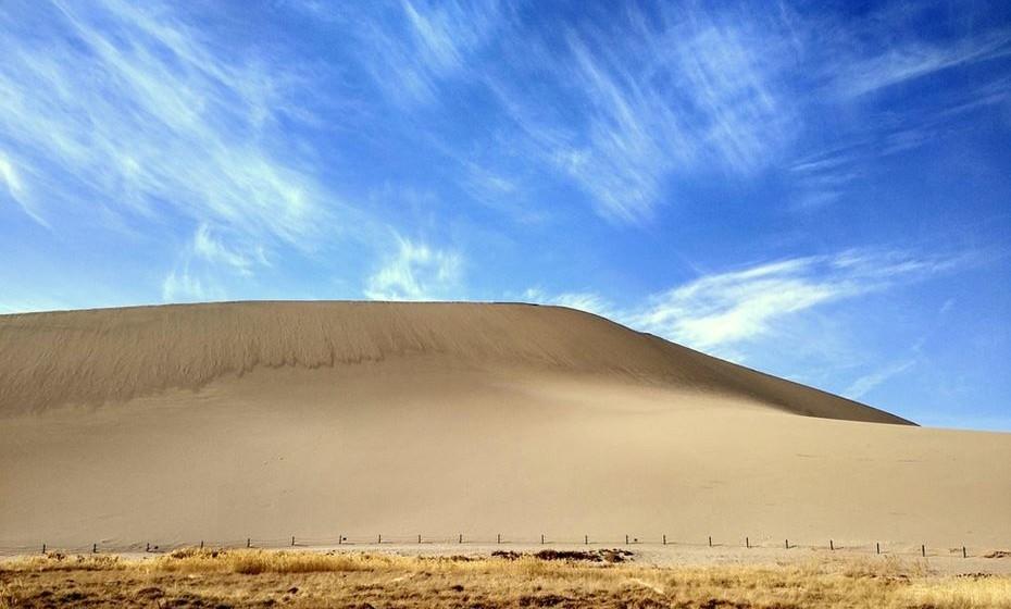 2006: A cor de areia, Sand Dolor, foi a escolhida. A partir daqui não existe explicação para as cores escolhidas.