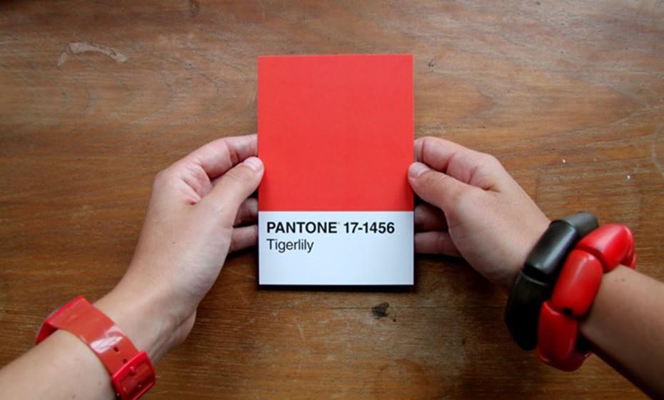 2004: Chamam-lhe Tigerlily e é uma mistura de vermelho e laranja.